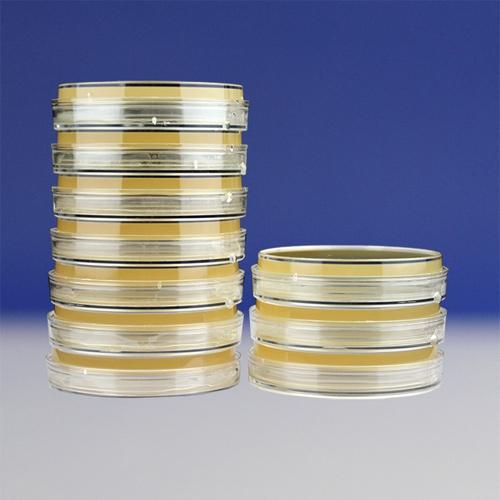 酵母浸出粉胨葡萄糖琼脂平板(HBPM5193)