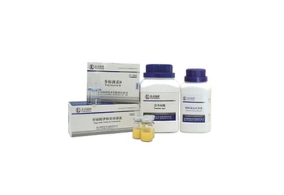 乳酸杆菌肉汤培养基(CM1402)