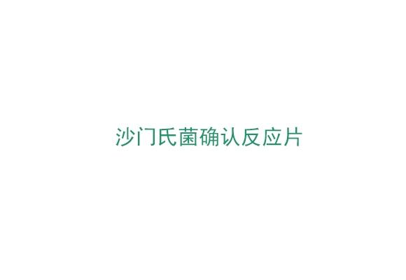 3M™ Petrifilm™沙门氏菌确认反应片(6539)