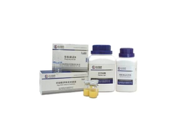 乳糖蛋白胨培养液 CM122