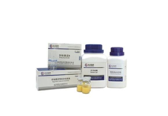 芽孢染液 CM1015